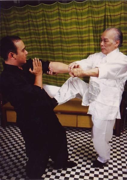 prakticke - Wing Chun Brno